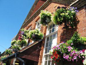 Escuela de inglés en Bournemouth | BEET Language Centre Bournemouth 17