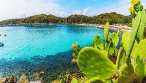 Escuela de italiano en la Isla de Elba | Centro Fiorenza Island of Elba 14