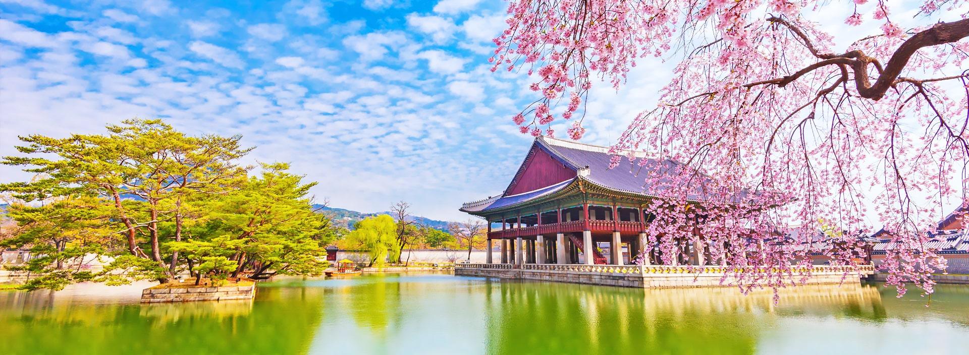 Cursos y escuelas de coreano en Corea del Sur