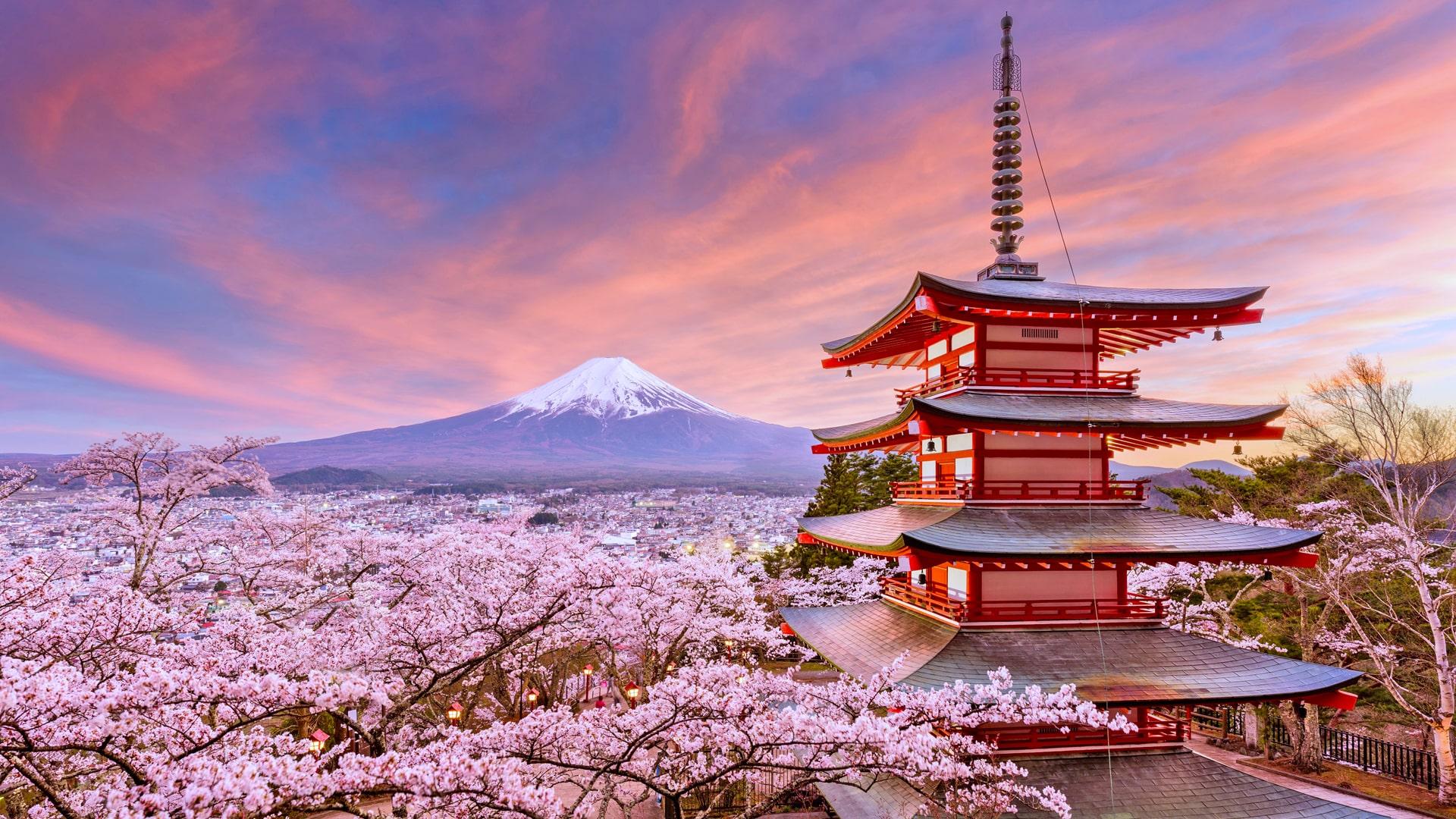Cursos y escuelas de japonés en Japón