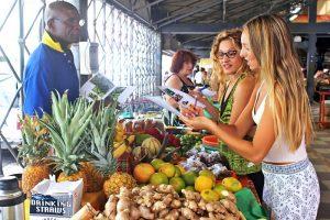Escuela de francés en Martinica | France Langue Martinique 19