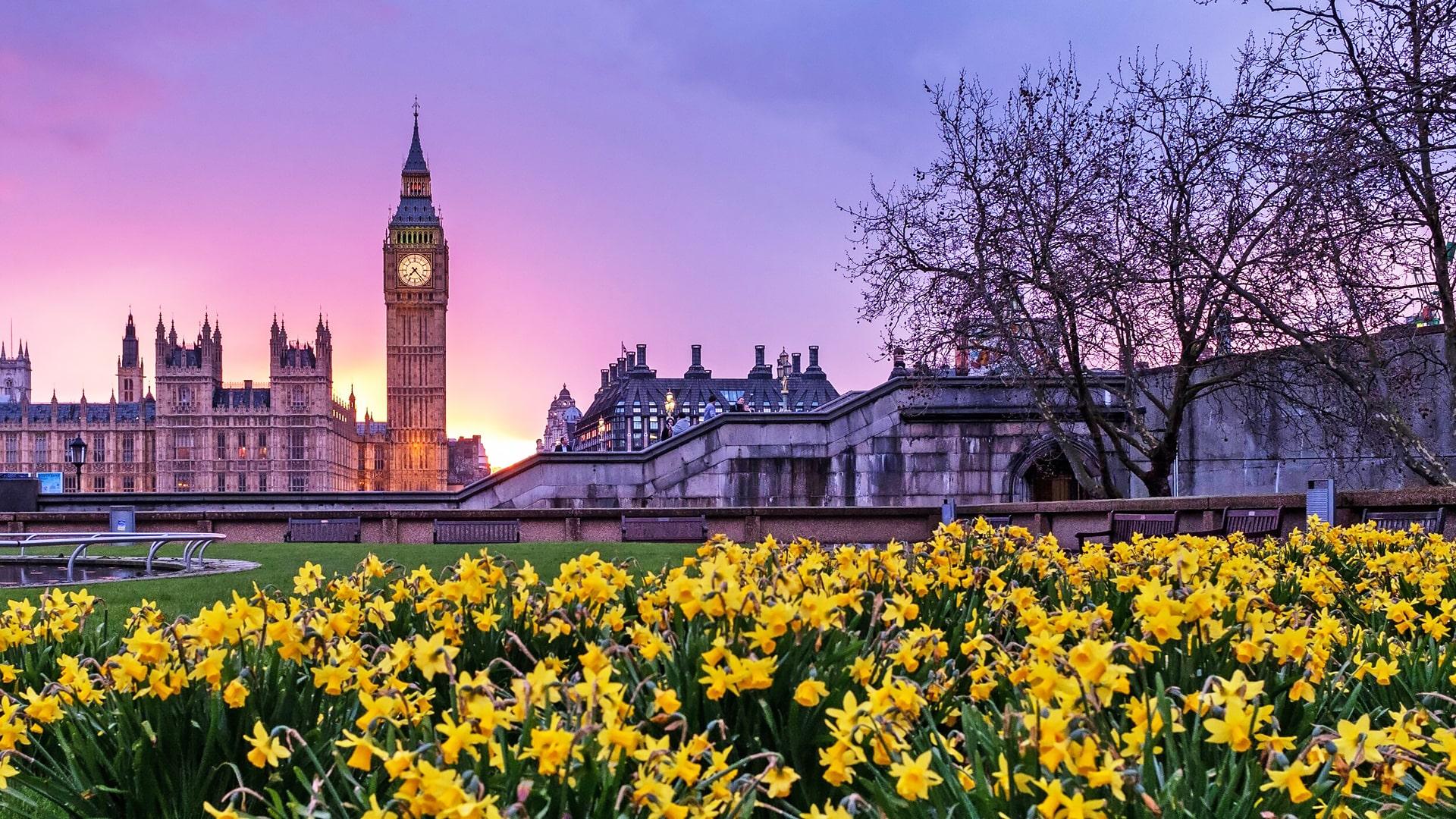 Frances King School of English London – Escuela de inglés en Londres