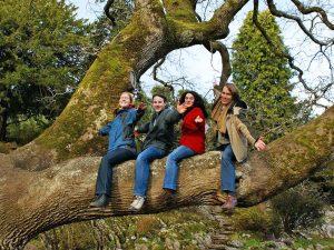 Escuela de inglés en Killarney | Killarney School of English 19