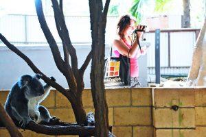 Escuela de inglés en Brisbane | Lexis English Brisbane 10