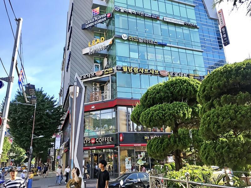 Escuela de coreano en Busan | Lexis Korea Busan 8
