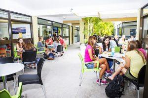 Escuela de inglés en Noosa | Lexis English Noosa 3