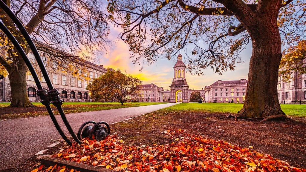 Año escolar en Irlanda en colegios e internados