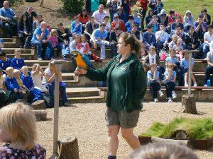 Curso de inglés y safari en Inglaterra 9