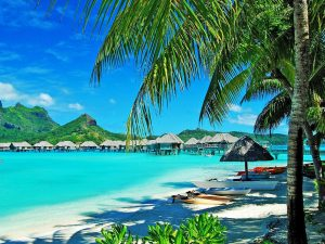 Curso de verano de inmersión en casa del profesor en Hawaii 2